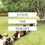 avoid the queues